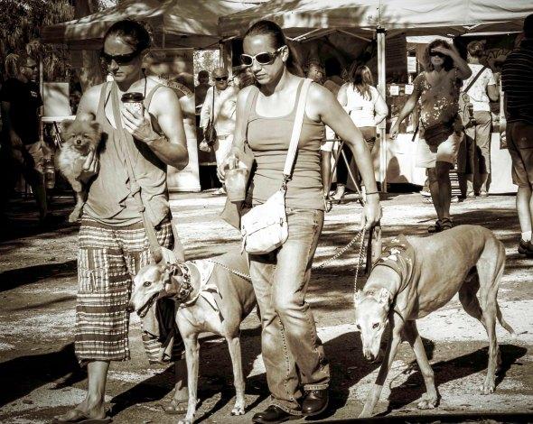 3 dogs b.w.20151226_6936-1-Edit-1