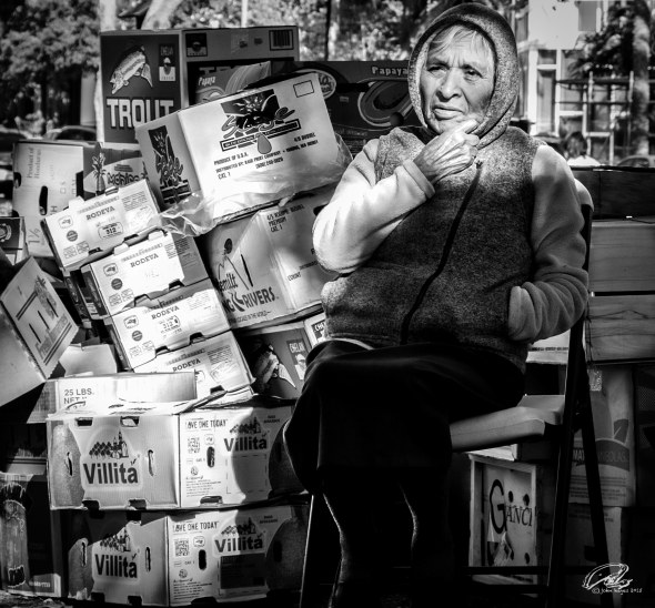 box lady0320160409_8776-1-Edit-2-1